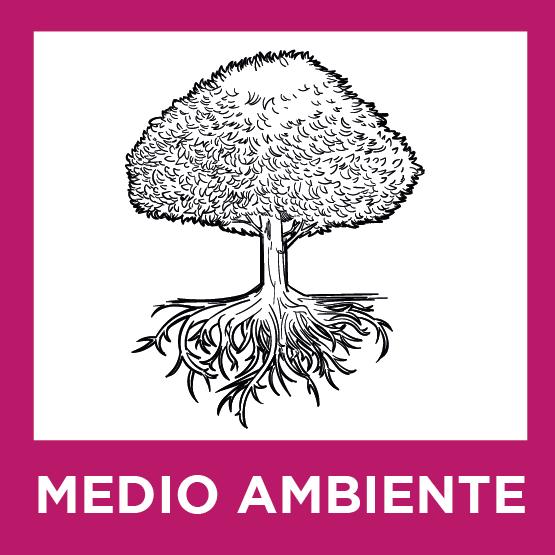 UPL Salamanca - Nuestras ideas - Medio ambiente